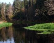 Резиденция Комела - Турбаза Вологда