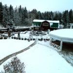 База отдыха Резиденция Комела - Банкет для корпоратива на природе