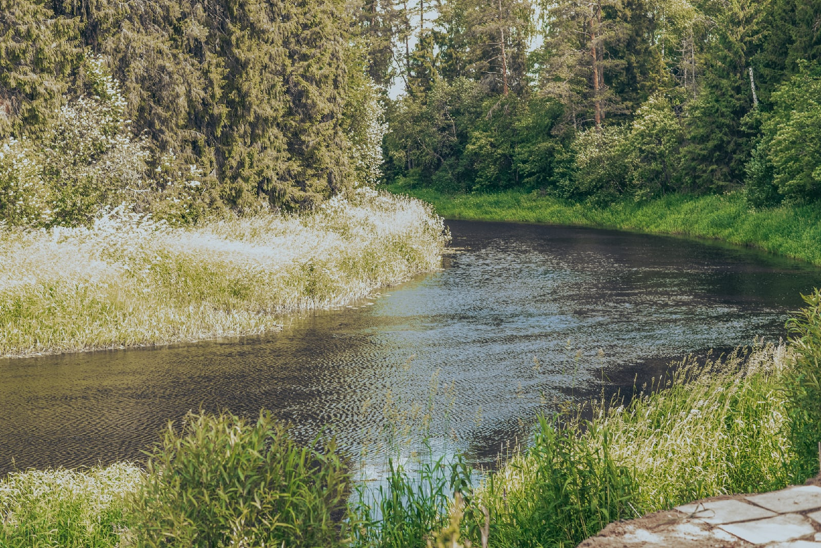 Беседка для отдыха на природе
