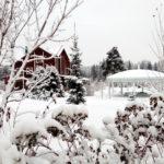 Банкетная Ротонда - Зимний Банкет на природе
