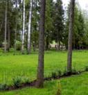 База отдыха Вологда. Турбаза Вологодская область.